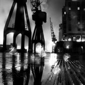 Cranes in the Rain BW